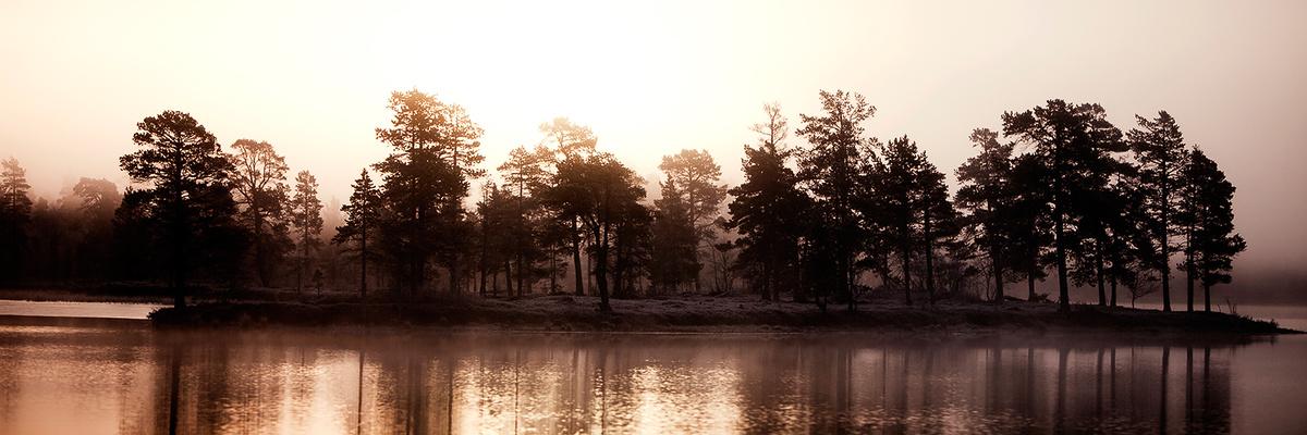Femunden innsjø morgensol