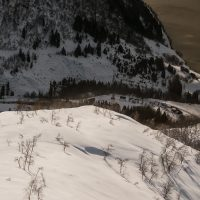 Ned mot fjorden av Bård Basberg
