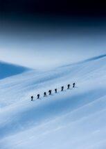 Ensom traver, fotokunst veggbilde / plakat av Bård Basberg
