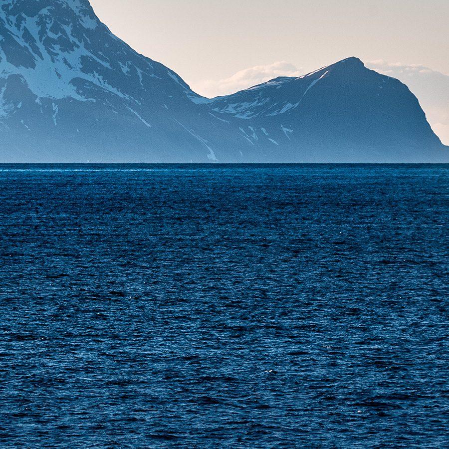 Nord-Fugløya, Lyngen av Erling Maartmann-Moe