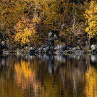 Høstfarger ved Innsjøen II, fotokunst veggbilde / plakat av Eirik Sørstrømmen