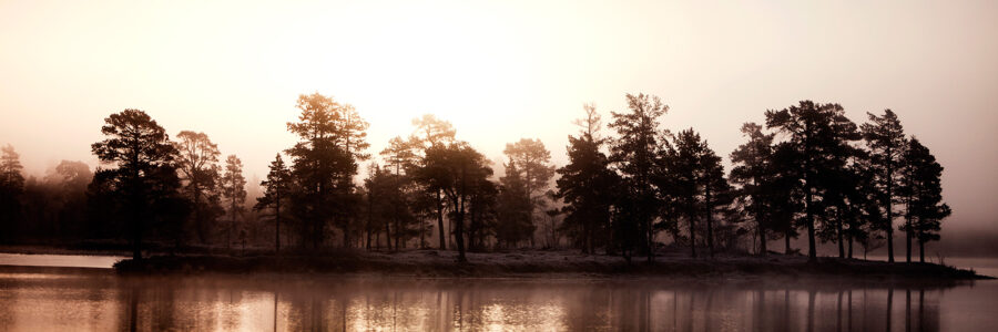 Femunden innsjø morgensol av Henning Mella
