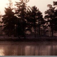 Femundsmarka, tåke, fotokunst veggbilde / plakat av Henning Mella