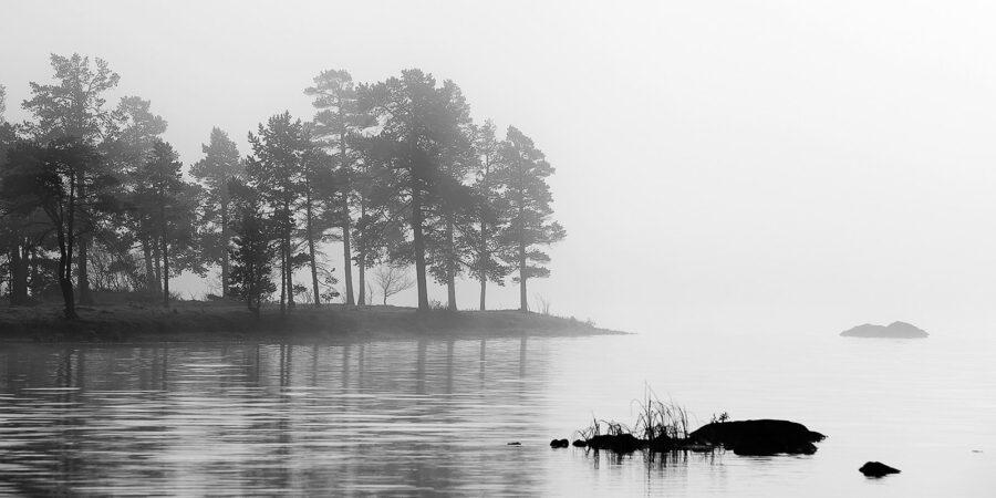 Femunden innsjø morgentåke av Henning Mella