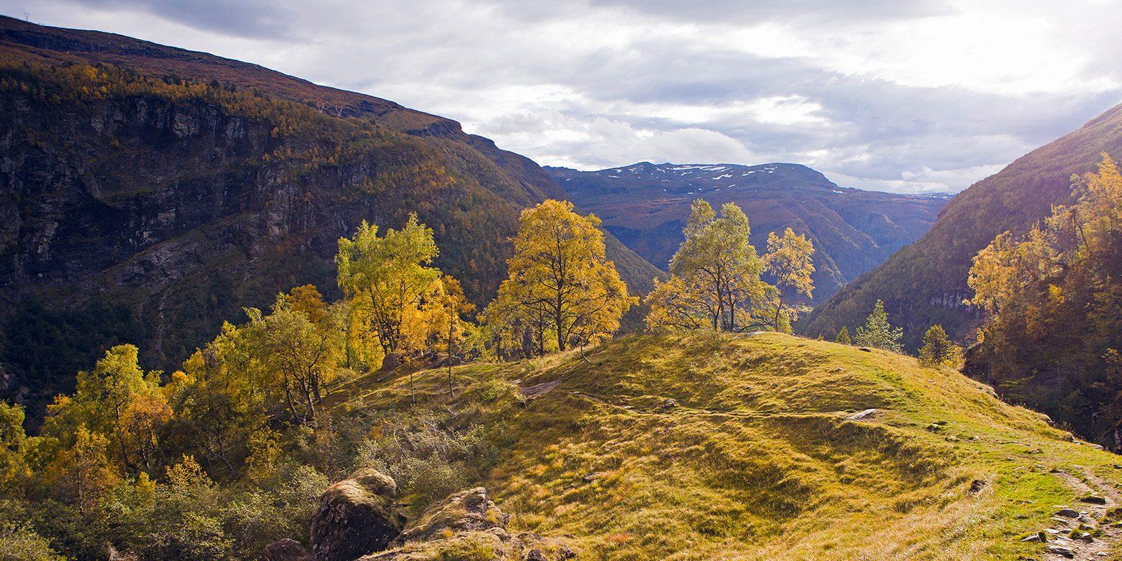 Høstfarger i Mørkridsdalen av Henning Mella