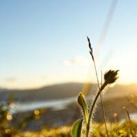 Solnedgang over Tromsø, fotokunst veggbilde / plakat av Henning Mella