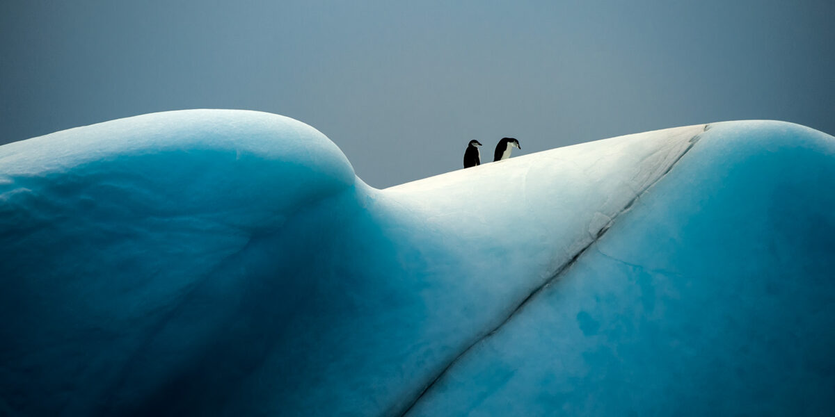 Hvilken topp skal vi ta? av Kåre Johansen