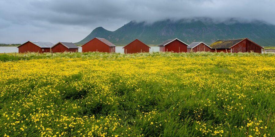 Naust i Delp av Kåre Johansen