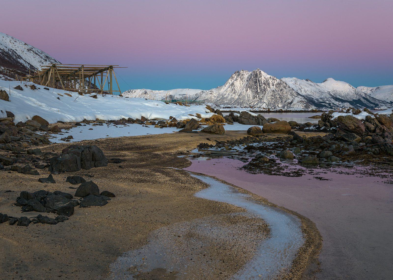 Skogsøya av Kåre Johansen