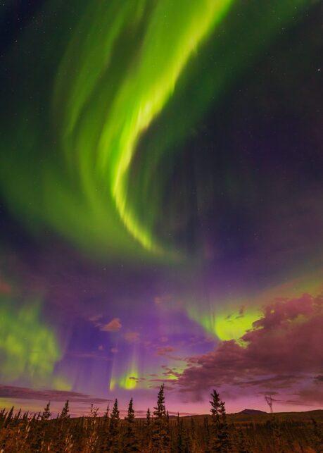 Nordlys over Denali II av Kåre Johansen