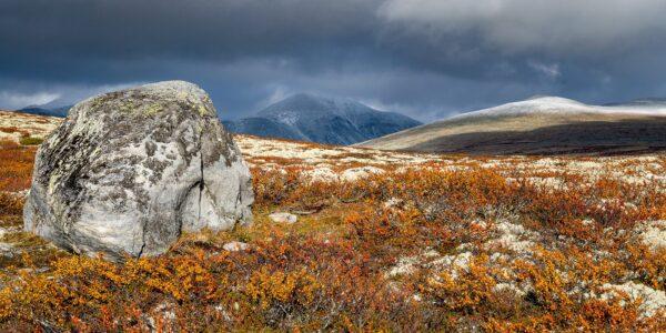 Høst i fjellet II av Kåre Johansen