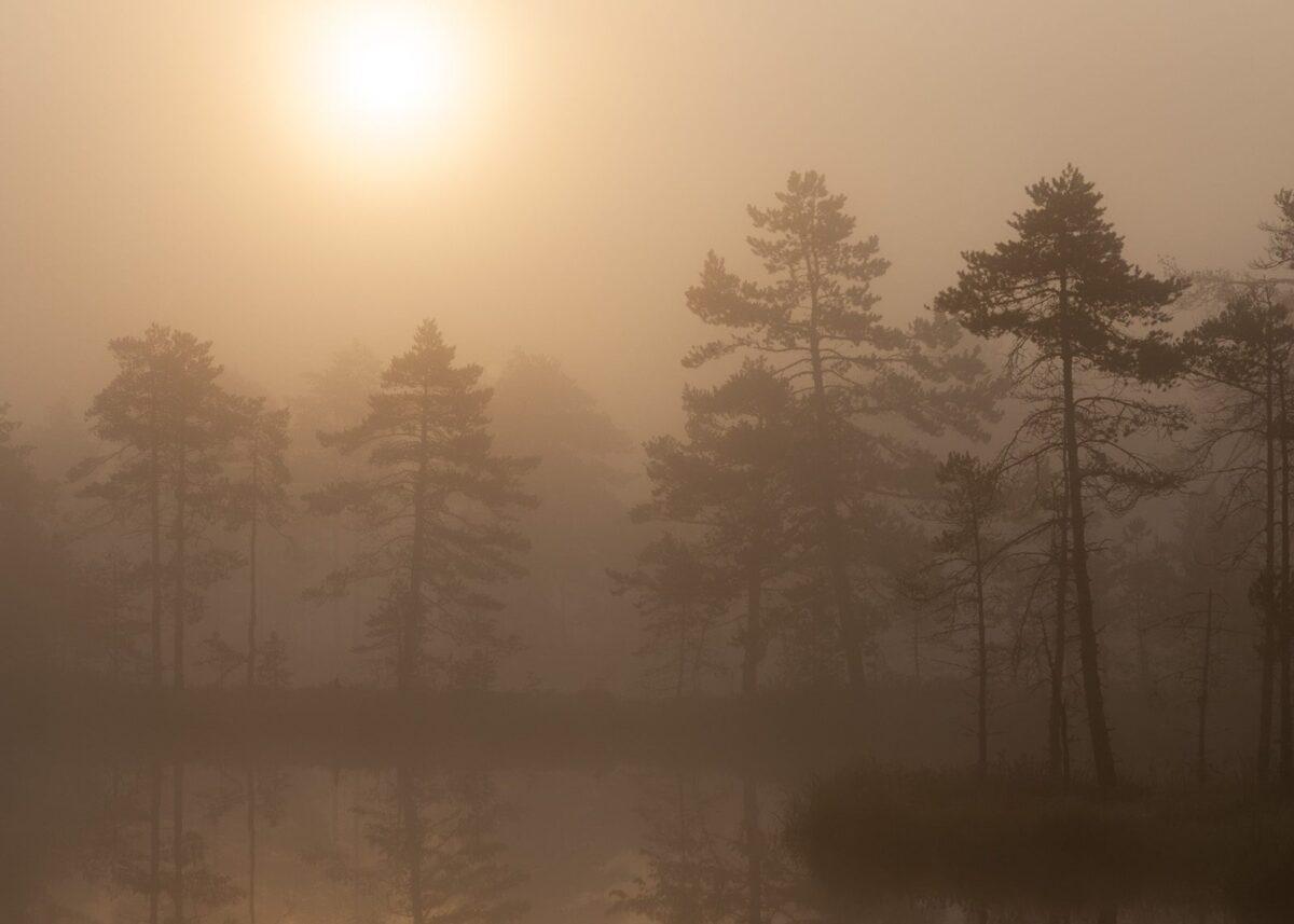 Sola forsøker å trenge gjennom tåketeppet, fotokunst veggbilde / plakat av Kjell Erik Moseid