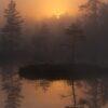 Tåkestmning ved et skogstjern, fotokunst veggbilde / plakat av Kjell Erik Moseid