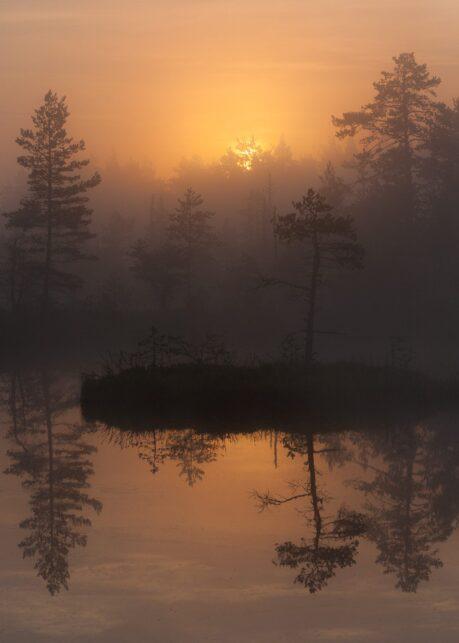 Soloppgang over skogstjern av Kjell Erik Moseid