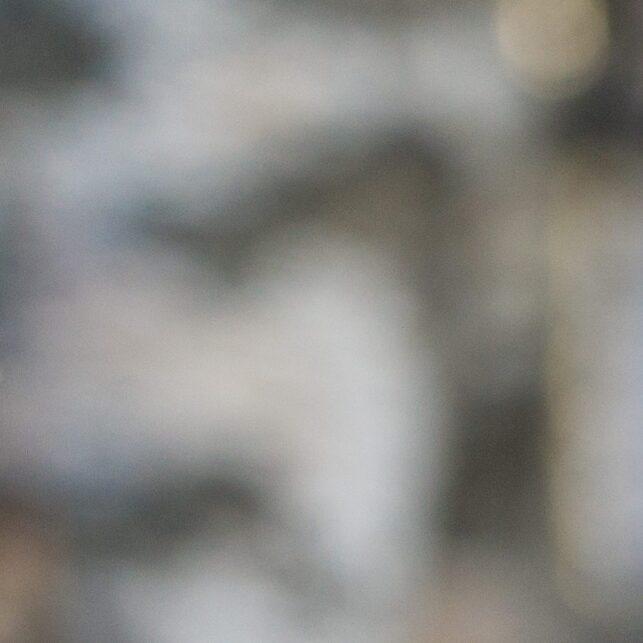 En konsentrert stegg speider etter høna, fotokunst veggbilde / plakat av Kjell Erik Moseid