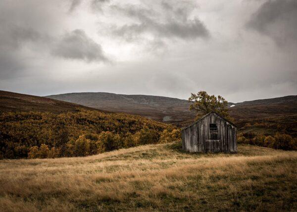 Setervoll på fjellet, fotokunst veggbilde / plakat av Kjell Erik Reinhardtsen