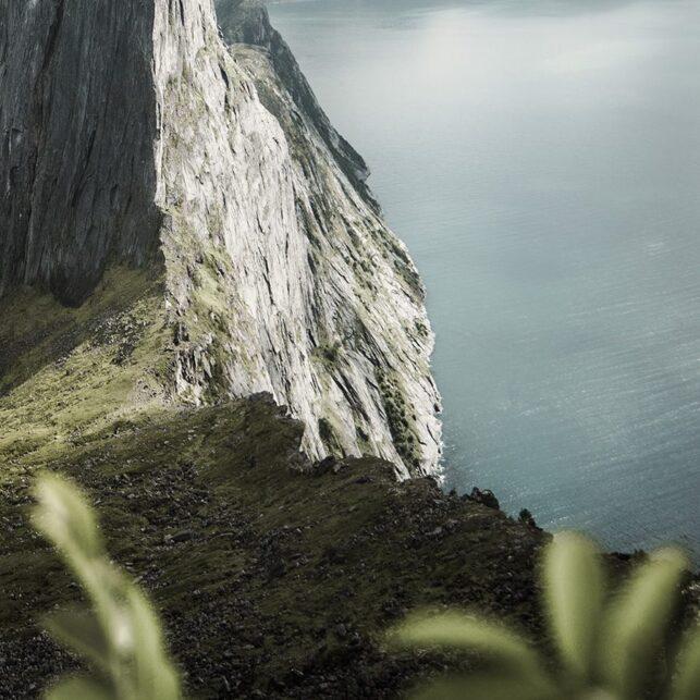 Segla rammet inn med blader, fotokunst veggbilde / plakat av Kristoffer Vangen
