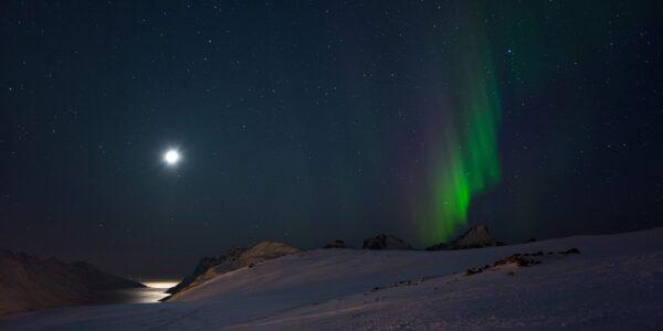 Nordlys over Kvaløya, fotokunst veggbilde / plakat av Magne Tveiten