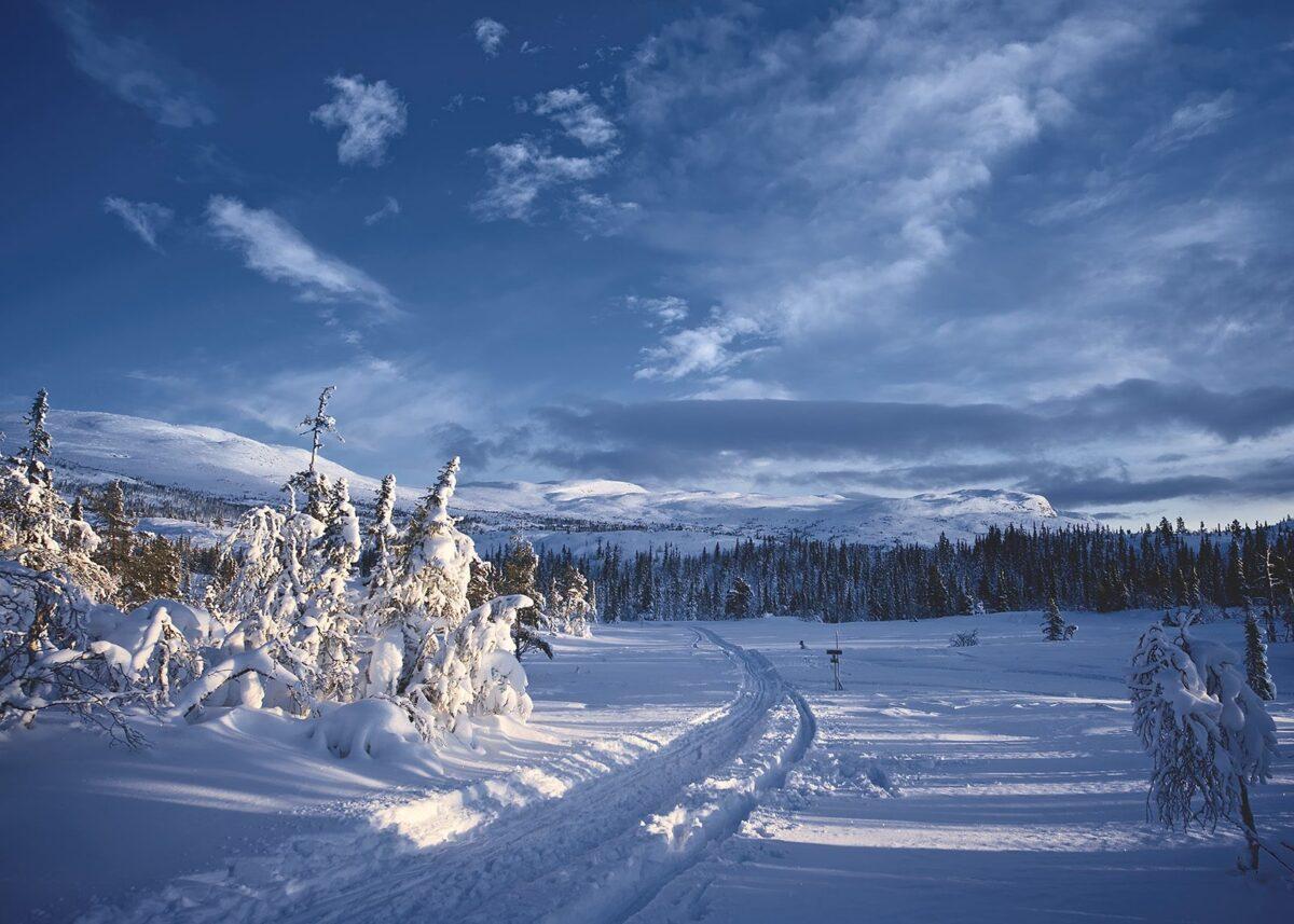 Klassisk vinterlandskap, fotokunst veggbilde / plakat av Peder Aaserud Eikeland