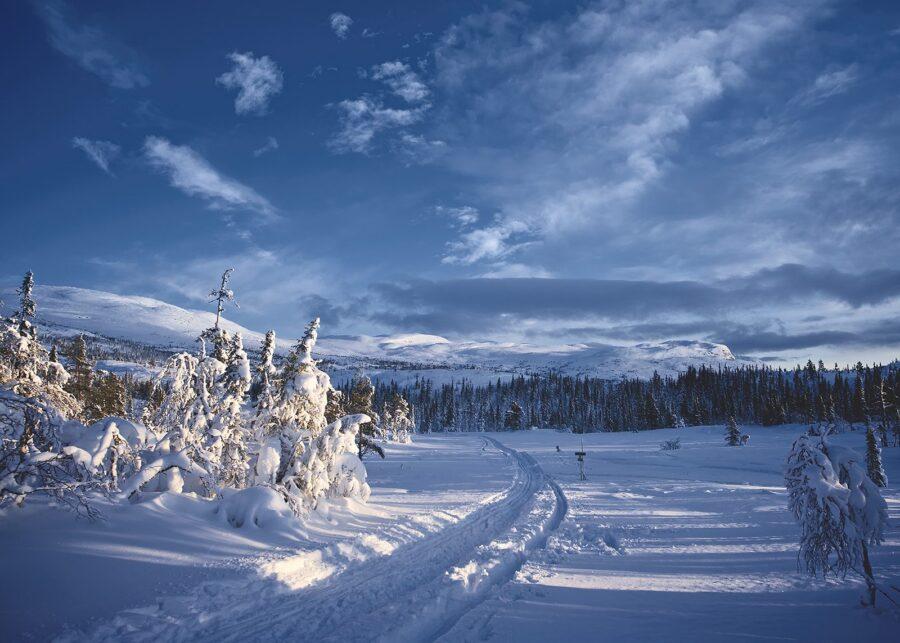 Klassisk vinterlandskap av Peder Aaserud Eikeland