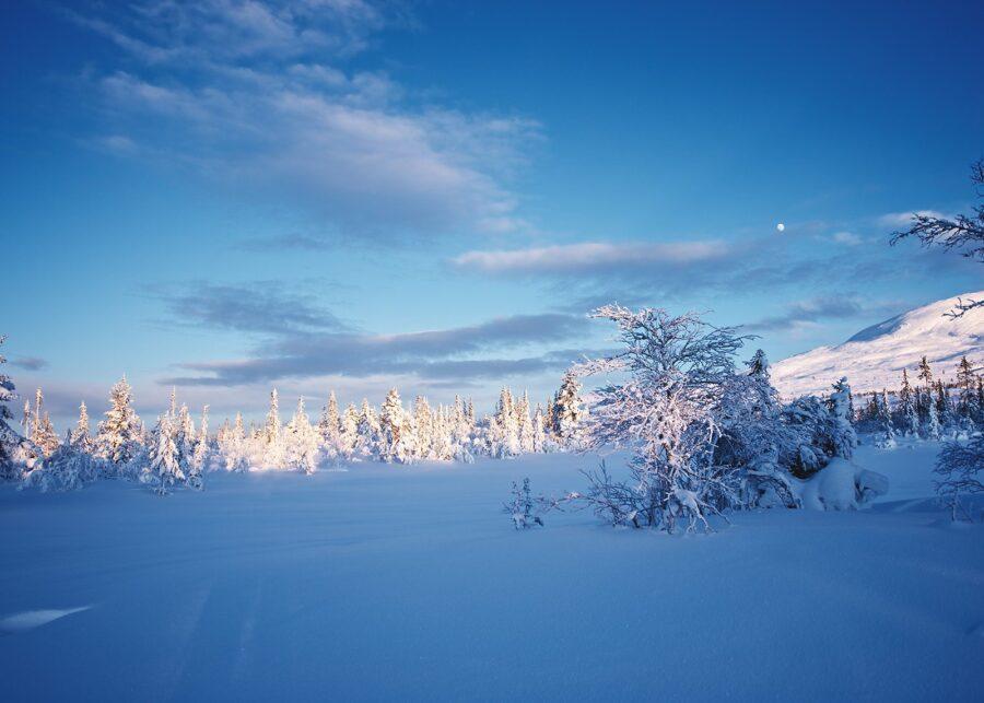 Klassisk vinterlandskap III av Peder Aaserud Eikeland