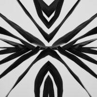 Sort-hvitt abstrakt refleksjon av Peder Aaserud Eikeland
