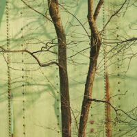 Kobbertank nagler, fotokunst veggbilde / plakat av Peder Aaserud Eikeland
