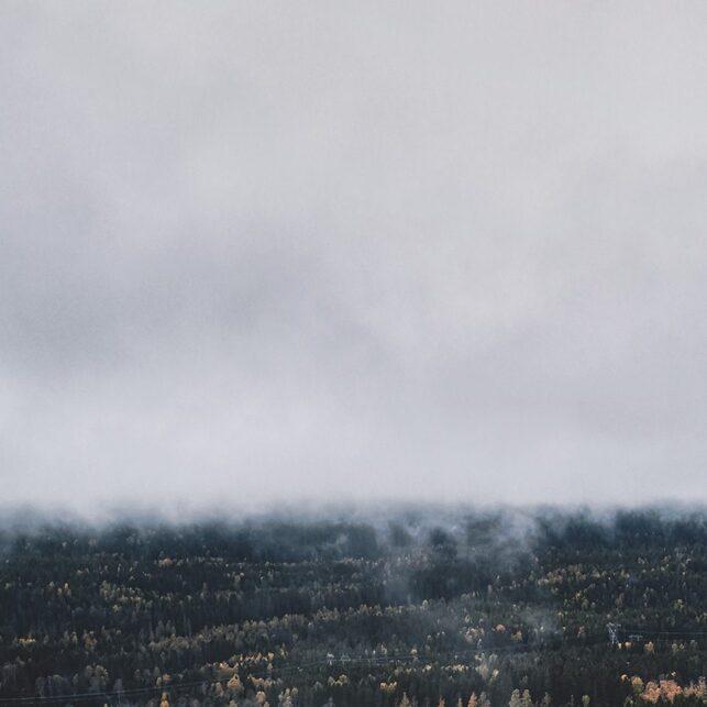 Nordmarka høst-tåke, fotokunst veggbilde / plakat av Peder Aaserud Eikeland