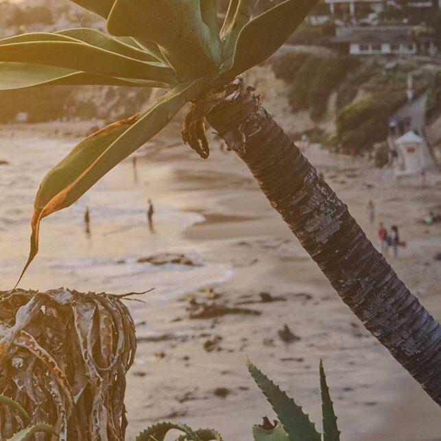 Solnedgang Laguna Beach, fotokunst veggbilde / plakat av Peder Aaserud Eikeland