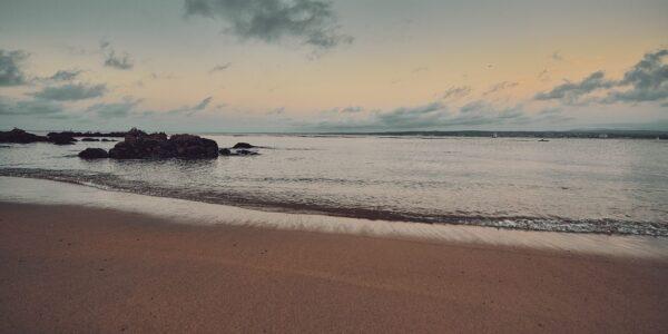 Roen på stranden, fotokunst veggbilde / plakat av Peder Aaserud Eikeland