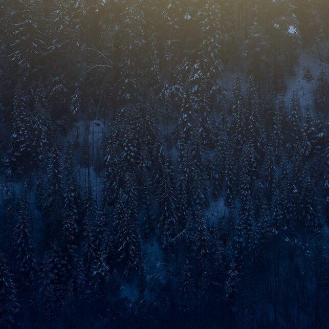 Sol gjennom vintertåke, fotokunst veggbilde / plakat av Peder Aaserud Eikeland