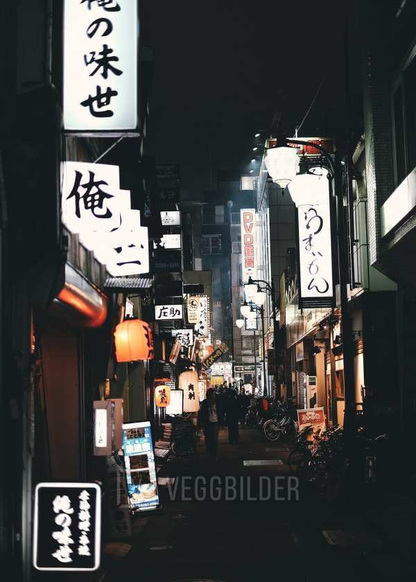 Neonskilt i Tokyo av Tor Arne Hotvedt