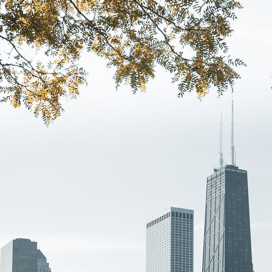 Chicago skyline I av Tor Arne Hotvedt