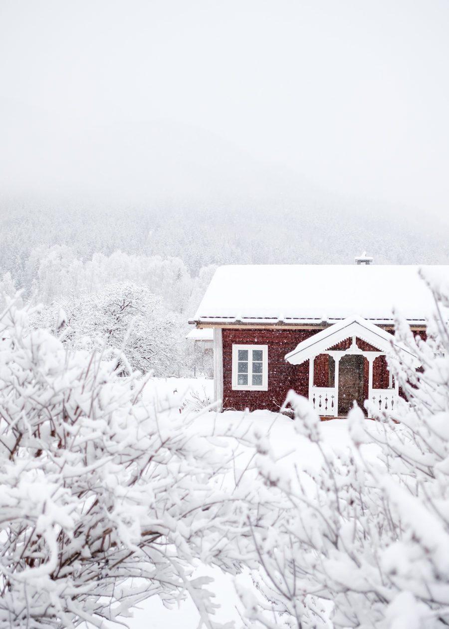 Whiteout av Tor Arne Hotvedt