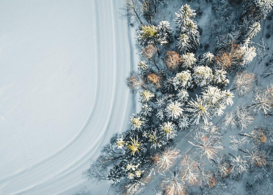 Vinter i Nordmarka II av Tor Arne Hotvedt