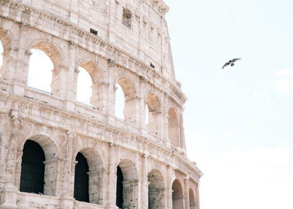Colosseum med en due flyvende forbi, fotokunst veggbilde / plakat av Tor Arne Hotvedt