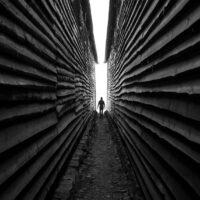 Mellom veggene av Tor Arne Hotvedt