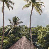 Eksotisk på Maldivene, fotokunst veggbilde / plakat av Tor Arne Hotvedt