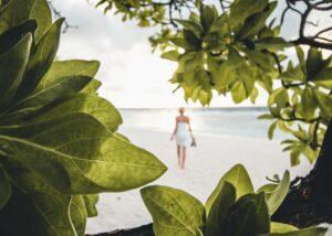 Krabbe på en strand i Maldivene, fotokunst veggbilde / plakat av Tor Arne Hotvedt