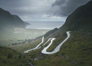 Revebjelle, fylkesblomsten for Sogn & Fjordane, fotokunst veggbilde / plakat av Tor Arne Hotvedt