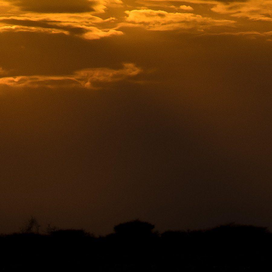 Soloppgang over savannen II av Terje Kolaas