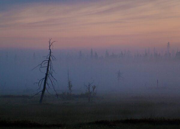 Morgentåke i Finnmark, fotokunst veggbilde / plakat av Terje Kolaas