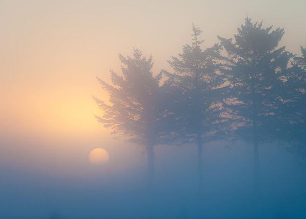 Vintersol på Jæren, fotokunst veggbilde / plakat av Terje Kolaas