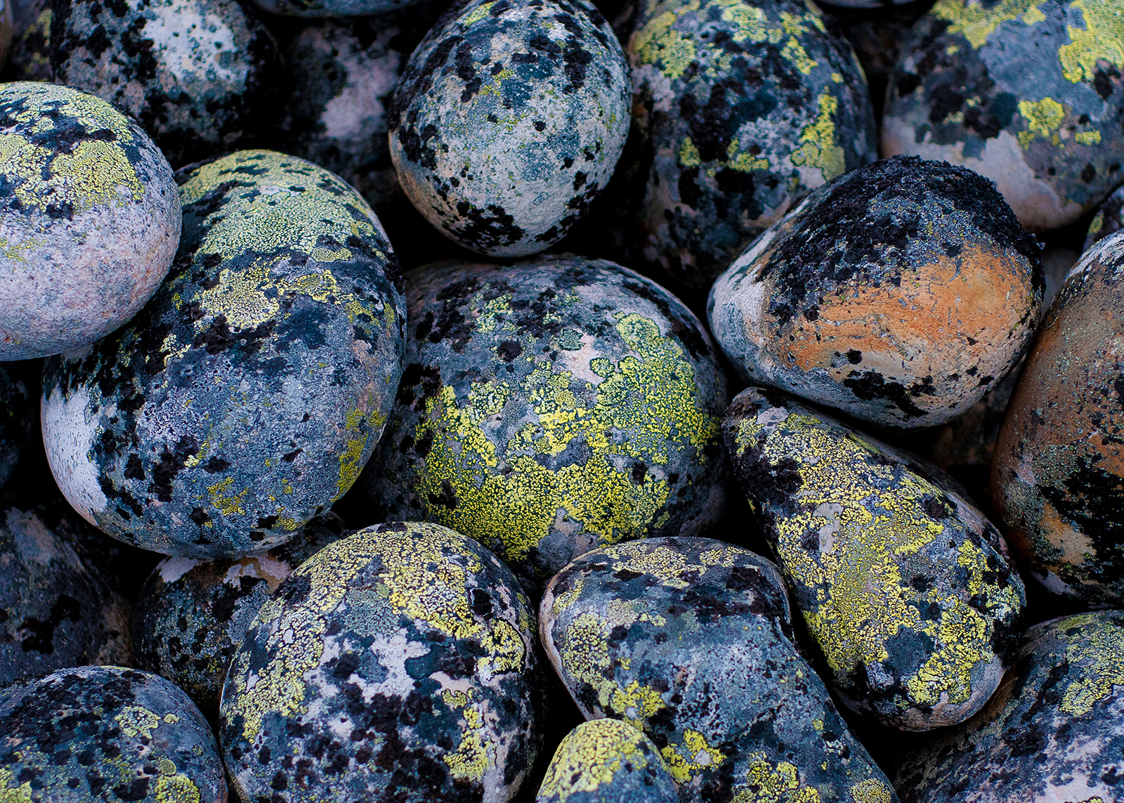 Verdenskart på stein av Terje Kolaas