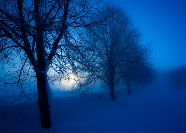 Vintertåke, fotokunst veggbilde / plakat av Terje Kolaas