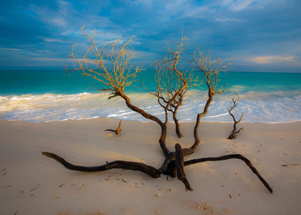 Tropisk strand, fotokunst veggbilde / plakat av Terje Kolaas