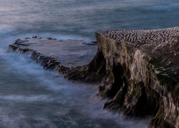 Kveldsro rundt fuglefjellet, fotokunst veggbilde / plakat av Terje Kolaas