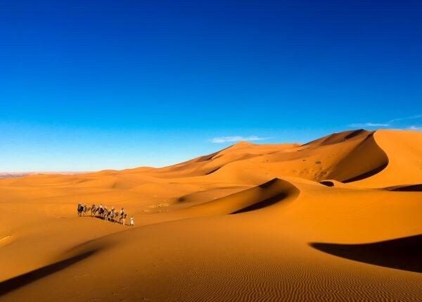 Karavane i Sahara av Terje Kolaas