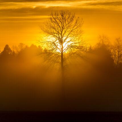 Varm soloppgang av Terje Kolaas
