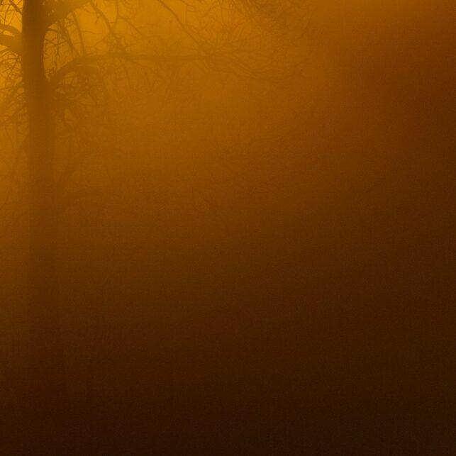 Varm soloppgang, fotokunst veggbilde / plakat av Terje Kolaas
